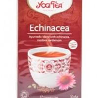 Yogi Tea, Echinacea, Krav!
